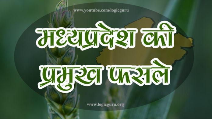 madhya-pradesh-ki-mukhya-fasal-mp-crops