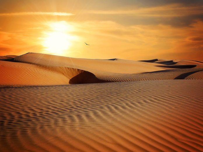 World Desert In Hindi