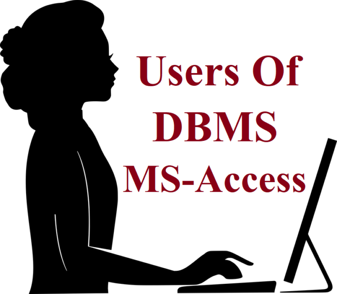 Users Of DBMS in Hindi